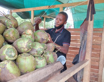 Daniel Otto takes coconut business a notch higher