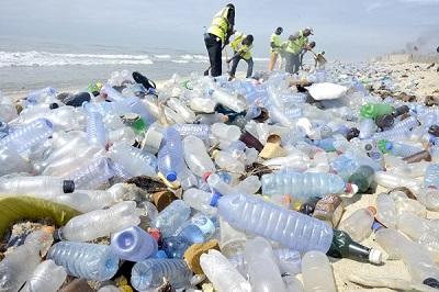 Plastic pollution causes harm