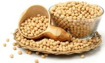 Fact sheet about legume in Ghana
